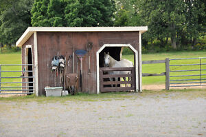 Hobby Farm For Sale Near Pakenham Ontario Kingston Kingston Area image 6