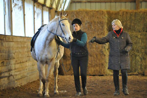 French Classical Dressage/Natural Horsemanship - Muriel Chestnut