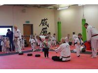 ABC Dragons, XS Taekwondo Kirkintilloch