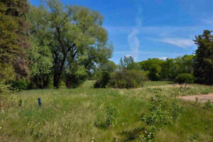 Private 3 Acre ESTATE Lot within 1/4 Mile of Sherwood Park