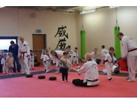 ABC Dragons, XS Taekwondo Burntisland