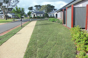 turf suppliers and installers 4landscaper Developers and Builder Melbourne CBD Melbourne City Preview