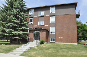 Newly updated Condo in brockville