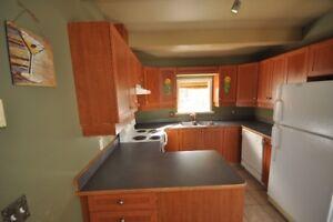 Kitchen cabinets - used