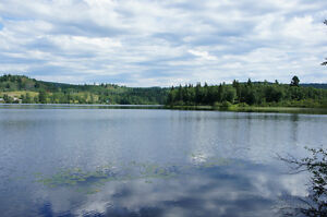 160 Acres with 1400 m of Lakefront on McCauley Lake, Horsefly