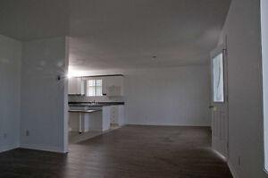 Très grand 5 1/2 style loft, rénové, avec sous-sol, pour juil.