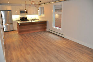 Newly renovated rustic modern 2 bedroom steps from Downtown London Ontario image 3