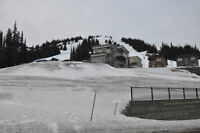R4 Building Lot at Silver Star Mountain Resort