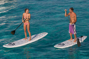 Wanted Stand Up Paddleboard