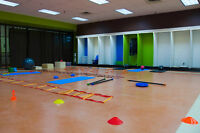 Studio Space Available! Yoga/ballet/fitness classes/aerobics etc
