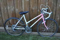 Nice Womens 10 Speed Bicycle