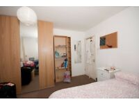Great large sunny room, in friendly student house share