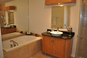 PIERREFONDS - LUXURIOUS CONDO - 2 Bedrooms - Appliances Included West Island Greater Montréal image 6