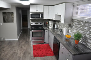 BEAUTIFUL FULLY FURNISHED TWO BEDROOM BASEMENT SUITE