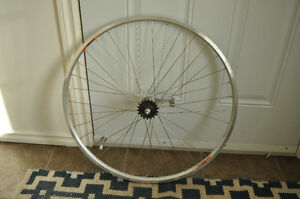 700c Coaster Brake Wheelset