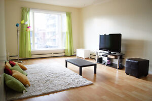 Amazing Cat friendly Southend~Steps to Universities&Downtown!!