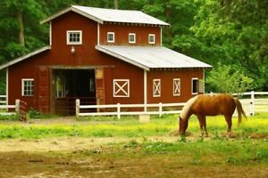 LOOKING FOR A RENT ON A FARM SO I CAN HAVE A HORSE!