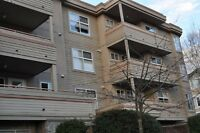 Large bright bedroom, private ensuite close to UVic and Camosun