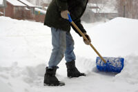 Will shovel drive-ways anywhere from 10 to 25 $