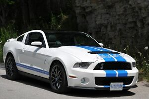 2011 Ford Mustang Shelby GT500 Tribute Collector Car (1 of 2)