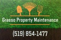 Lawn Rolling & Aerating - Exterior Property Maintenance