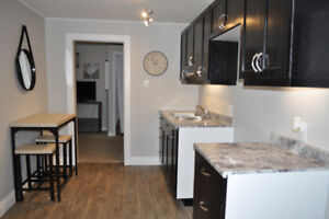 Furnished 1 Bedroom Apartment - 2.5 km to Military Base