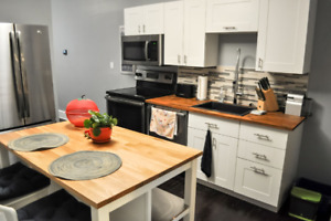 Available fall 2019! Fully Furnished 1 bedroom DOWNTOWN PARKING