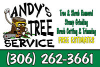 """TREE CUTTING BY ANDYS TREE SERVICE SENIORS DISCOUNT"""