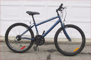 Northland Cobra 18 speed mountain bike