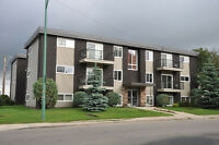 Near University - Renovated 2 Bdrm Condo Suites for Rent