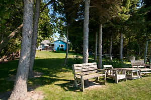 """Life is a Beach - """"The Lakehouse"""" London Ontario image 1"""