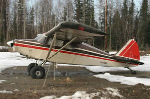 Looking Piper Pa 22/20