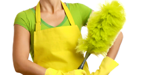 Cleaning services Chatswood West Willoughby Area Preview