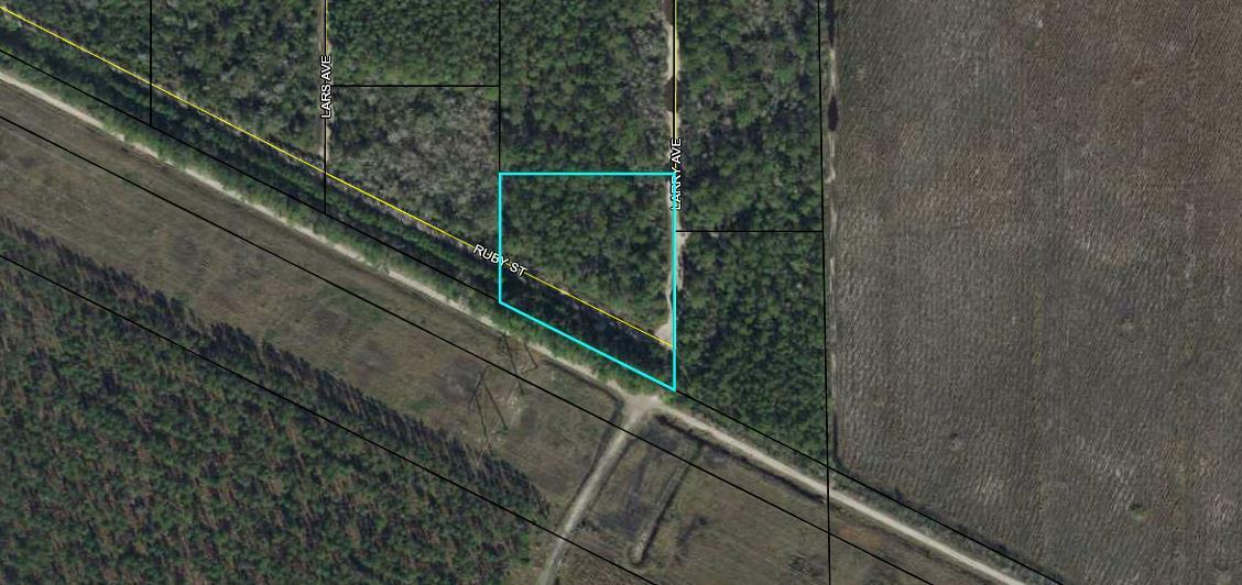 PRE-FORECLOSURE FLORIDA TAX LIEN CERTIFICATE FOR  LAND 1.40 ACRES HASTINGS, FL