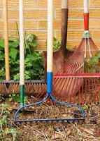 Does your yard need TLC?