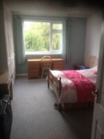 VERY SPACIOUS RECENTLY DECORATED 1 BED FLAT WITH OFF ROAD PARKING NO FEES-may take house cat