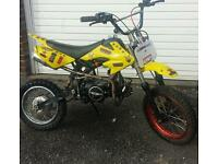 125cc pit bike crosser 120 110 140 stomp wpb quad