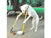 E-petition Dog Bins North End