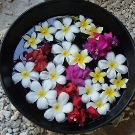Exquisite Thai massage