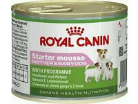 Royal Canin mother and babydog starter mousse