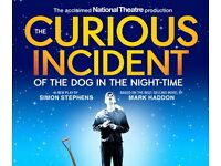 The Curious Incident of the Dog in the Night-Time 15th Oct, 7:30pm