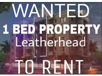 Looking for a 1 bed flat/house/maisonette to Rent - not flat/house share