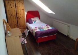 Lovely spacious light loft room (prefer female)