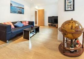 Absolutely Stunning 3 Bedroom Flat - Oval/Stockwell