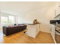 Amazing 1 bed with a roof terrace!