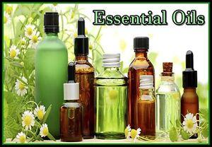 Aromatherapy Essential Oils Kawartha Lakes Peterborough Area image 1