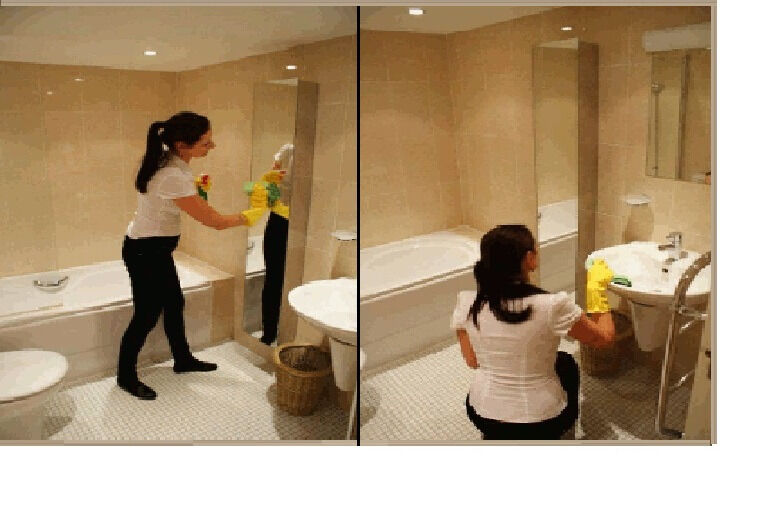 Cleaning FromTop To BottomWith AttentionProfessionalDomestic - Bathroom cleaning lady