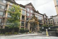 $1100 / 1br - 678 sqft - Great apartment in nice area (Langley)
