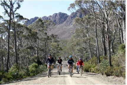 SNOW NATIONAL PARK & 48 MINUTES FROM TASMANIA'S EAST COAST. Ben Lomond Guyra Area Preview