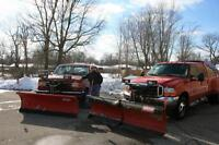 Snow Removal Salt and Sand Spreading Mississauga Winter Services